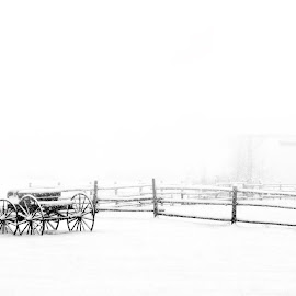 Winter at the Ranch by Twin Wranglers Baker - Black & White Landscapes