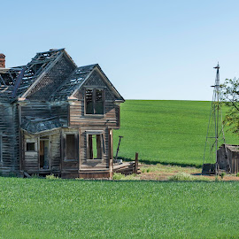Old abandoned farm house by Chris Bartell - Buildings & Architecture Decaying & Abandoned ( farm, house )