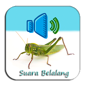 Free Download Suara Belalang Masteran Top APK for Samsung