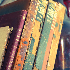 Antique Books by Rachael Anderson - Artistic Objects Antiques
