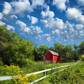 Noticing The Days Hurrying By by Phil Koch - Landscapes Prairies, Meadows & Fields ( vertical, travel, yellow, sky, nature, weather, light, colors, twilight, art, mood, journey, horizon, portrait, country, dawn, environment, season, serene, outdoors, lines, natural, hope, inspirational, wisconsin, ray, landscape, sun, photography, life, emotions, horizons, inspired, clouds, office, heaven, beautiful, scenic, living, morning, field, blue, sunset, peace, meadow, summer, beam, sunrise, earth )