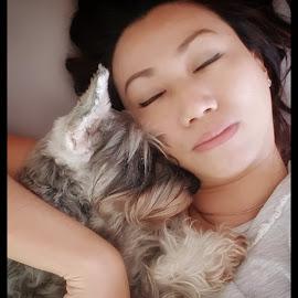 Deep Sleep by Sugiarto Widodo - Animals - Dogs Portraits ( sleep, portrait, dog,  )
