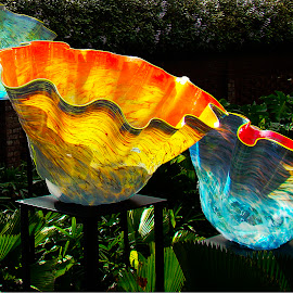 Chihuly - Orange and Blue by Dee Haun - Artistic Objects Glass ( artistic objects, orange, flower bowls, glass, blue, illuminated, 070831s0227e1, 070831s0227ce2 )