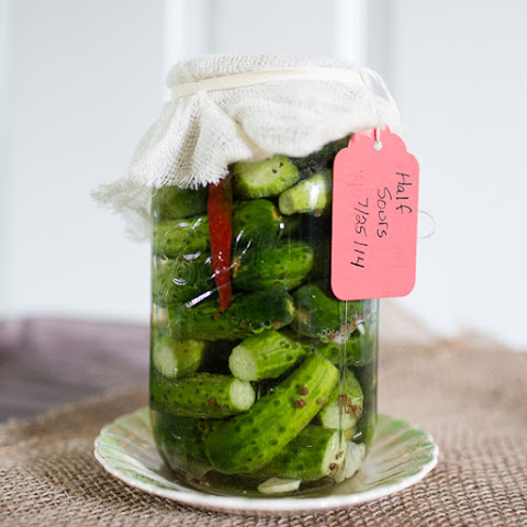 Half-Sours Pickles | Fermenting!