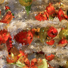 On the Tree by Sandy Darnstaedt - Public Holidays Christmas ( Christmas, card, Santa, Santa Claus, holiday, holidays, season, Advent,  )