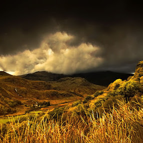 Snowdon by Angel Weller - Landscapes Mountains & Hills ( clouds, stormy, grasses, mountain, dark )