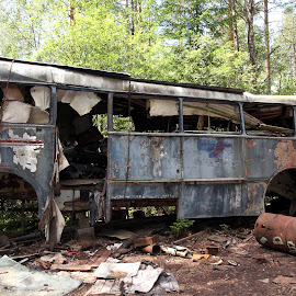 This Buss don´t work by Annika Torstensson - Transportation Automobiles ( old, buss, aminaphoto, carcemetary, annika torstensson,  )