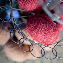 Yarn on Tiered Shelf by Alyssa Petrella - Artistic Objects Clothing & Accessories ( fiberarts, needlearts, crochet, knitting, shelving, crafting, yarn shop, crafts )
