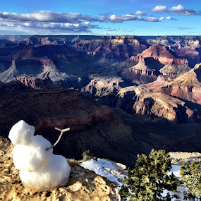 Snowman at the Grand Canyon by Charline Ratcliff - Landscapes Caves & Formations ( winter, nature, arizona, snowman, grand canyon )