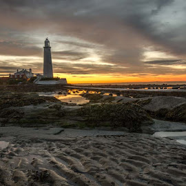 St Mary`s Lighthouse by Phil Reay - Landscapes Beaches ( st mary`s, whitley bay, lighthouse, sunrise )