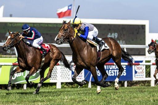 Shot Menzel (Holy Roman Emperor) ganó el Clásico Rotary Club De Santiago (1300m-Pasto-CHS).