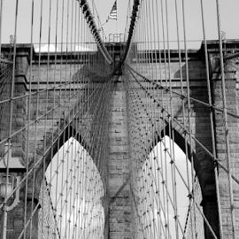 crossed by Fernanda Paixão - Buildings & Architecture Bridges & Suspended Structures ( black and white, new york, bride )