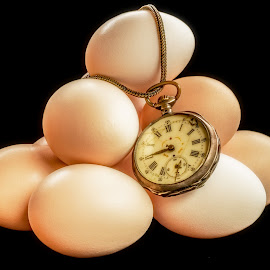 Eggs time by Opreanu Roberto Sorin - Artistic Objects Other Objects ( shell, old, cutout, uncooked, single, poultry, cuisine, jewelry, etched, egg, yolk, used, glow, calorie, subtle, close, time, cover, macro, eminent, nature, depraved, protein, darkness, black, copy, isolated, shades, ellipse, worn, watch, texture, white, dairy, corrupted, pocket, emerging, food, view, natural, antique, floral, filigree, raw, concept, unique, poised, albumen, nutritious, development, breakfast, boiled, retro, object, space, aliment, chicken, numbers, glass, cooking, decayed, fine, closeup, top, animal, beginning, clock, vintage, back, growing, gray, speckled, broken, scratched, organic, timepiece, color, background, design, produce, growth )