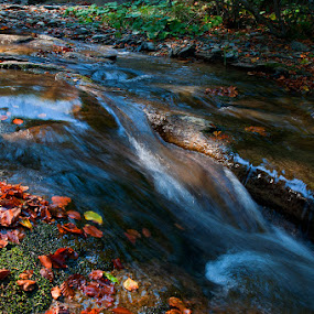 Autumn by Sead Kazija - Landscapes Waterscapes