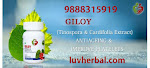 Giloy Capsules Herbal Remedy Benefits and Uses
