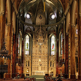 Basilica, Montreal by Cora Westermann - Buildings & Architecture Places of Worship ( montreal, church, basilica,  )