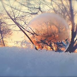 Ice Fire by D Kay Jantzi - Artistic Objects Still Life ( bubble, winter, sunset, frost, frozen )