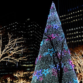 Lighted tree by Mishesh Ramesh - Public Holidays Christmas ( lights, christmas, garden, korea, mall )