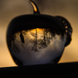 Heaven in an Apple by Lisa Hendrix - Artistic Objects Other Objects ( reflection, sky, apple, sunset, trees )