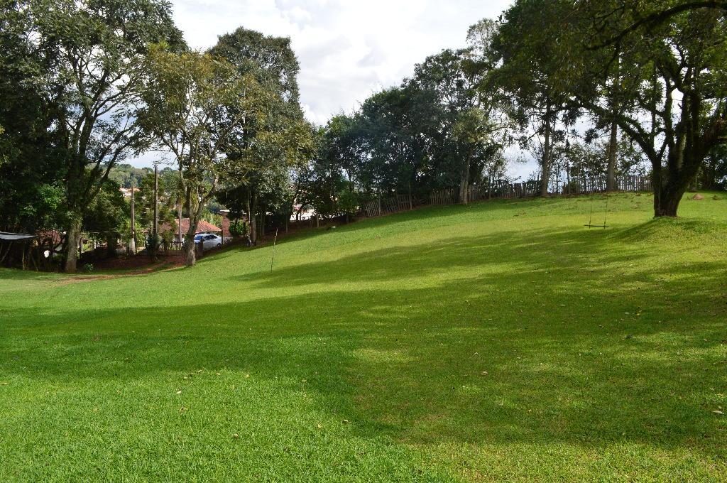 Terreno á venda, 28 mil metros quadrados, Campo Largo