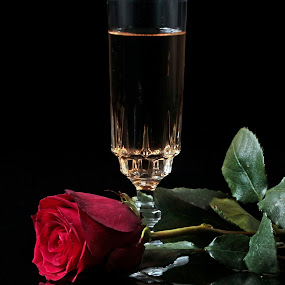 Champagne and Rose by Cristobal Garciaferro Rubio - Food & Drink Alcohol & Drinks ( cup, wine, rose, champagna, red rose, leaf, leaves )
