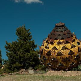 Big thistle by Martin Kolář - Buildings & Architecture Statues & Monuments