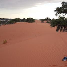 Sand Dunes by Ansie Steyn - Landscapes Deserts