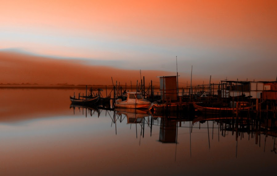 by Fernando Rodrigues - Landscapes Waterscapes