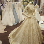 Wedding Gowns Designs Icon
