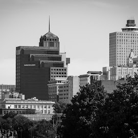 Memphis, Tennessee by Mary Phelps - City,  Street & Park  Skylines ( skyline, memphis, black and white, tennessee, downtown )