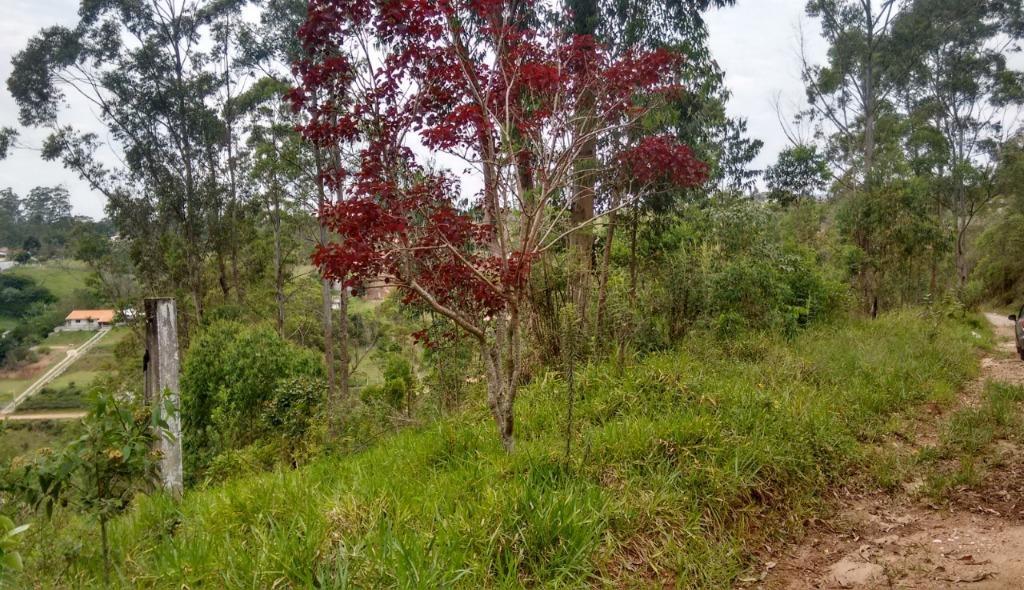 Terreno à venda, 5005 m² - Bairro Cerro Azul - Campo Limpo Paulista/SP