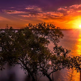 Sunday Sunset by Alex Stecina - Landscapes Sunsets & Sunrises ( water, clouds, reflections, ocean, beach, dusk, sun, coast, colours, sky, sunset, trees, light )