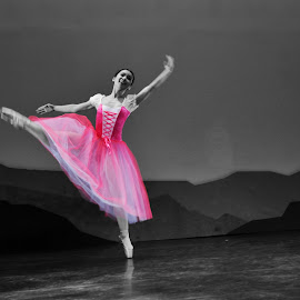 Ballerina in Pink by Joni Chng - People Musicians & Entertainers ( color splash, pink, ballet, giselle, dancer )