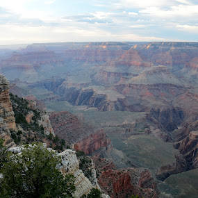 Grand Sunset by Vita Perelchtein - Novices Only Landscapes ( wild, old, millions of years, cliffs, nature, visitor center, green, sunset, canyon, grand canyon )