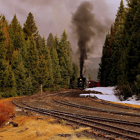 Cumbres 463 by Steve Tharp - Transportation Trains