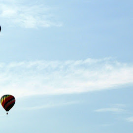 Balloon Races by Christine B. - Transportation Other ( ohio, airborne, balloon races, races, balloon )