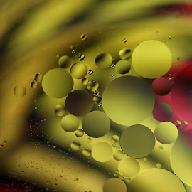 Golden Orbs by Janet Herman - Abstract Macro ( water, abstract, oil and water, macro, ellipses, reflections, orbs, golden, oil )