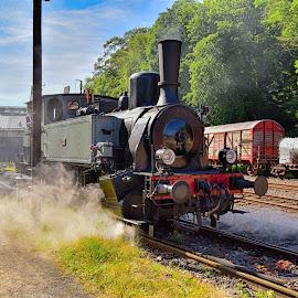 Getting Ready ! by Marco Bertamé - Transportation Trains ( steam engine, fond-de-gras, locomotive, train 1900, black, steam, luxembourg,  )