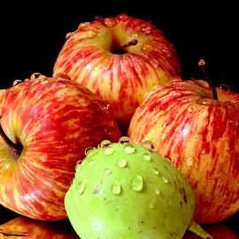 BI COLOURED by SANGEETA MENA  - Food & Drink Fruits & Vegetables