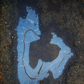 Двое by Oleg M Kulishov - Abstract Water Drops & Splashes ( вода, осень, abstract, лёд )