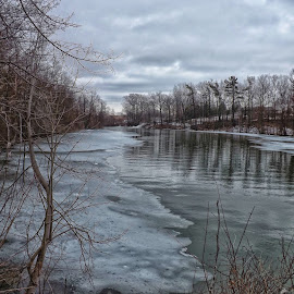 View From Green Bridge by Nick Goetz - Landscapes Waterscapes ( water, winter, ice, trees, forest )