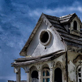 Momma's Birdhouse by Pamela Wittern - Buildings & Architecture Decaying & Abandoned (  )