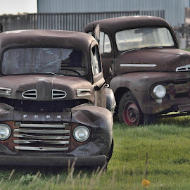 Couple of Old Boys by Bob Bissonette - Transportation Automobiles ( transportation )