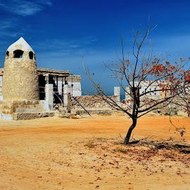 Al Hamra - The ghost village by Tomasz Budziak - Buildings & Architecture Public & Historical ( village, mosque, uae, asia, architecture )