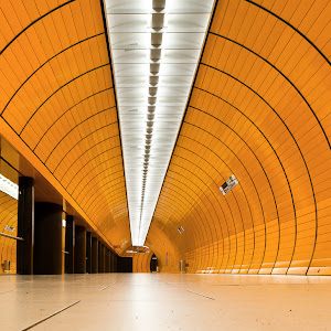 IMG_7463.Orange tube.jpg
