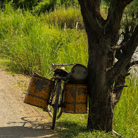 Heavy loaded! by Edzo Boven - Transportation Bicycles ( smc pentax da 18-135 mm, myanmar, vakanties, 2014, pentax, pentax k-3 )