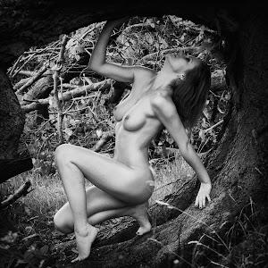 tree nude.jpg