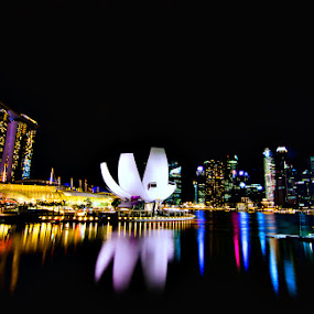 Helix Bridge, Marina Bay Sands and Art Science Museum of Singapore by Gian Mark Quidasol - City,  Street & Park  Vistas