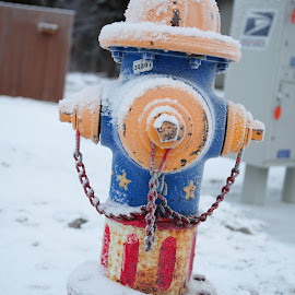 patriotic hydrant by Stefanie Hawkins - City,  Street & Park  Neighborhoods ( red, patriotic, blue, white, hydrant, fire )