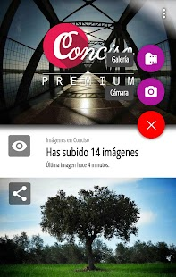 Conciso - screenshot